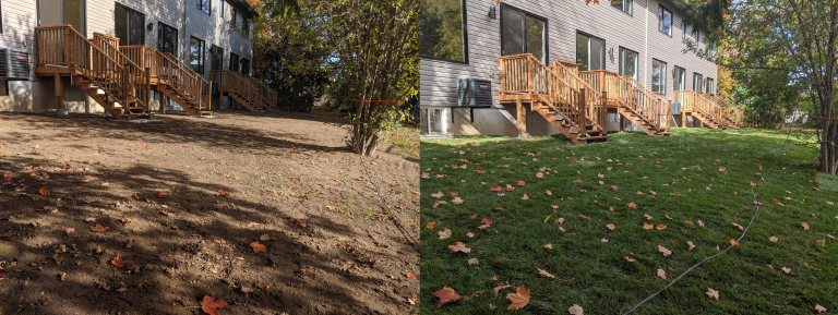 Before and After Sod